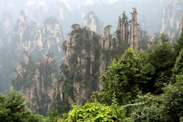 Private Tour of Zhangjiajie National Forest Park, Wulingyuan Scenic, and Historic Interest Area of Zhangjiajie