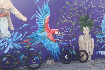 Fat Bike Graffiti and Art Tour in...