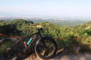 Fat Bike Mountain Tour in Puerto...