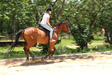 Shore Excursions - Horseback Riding from Montegobay