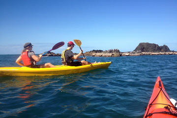 Port Douglas Half-Day Kayak Tour