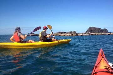 Port Douglas Half-Day Kayak Tour