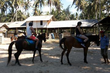 Bali Beach Horse Riding…