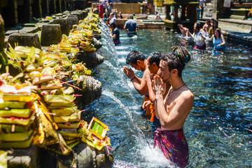 Bali Fullday Exploring Volcano and Holy Spring Temple with 2 Hours...