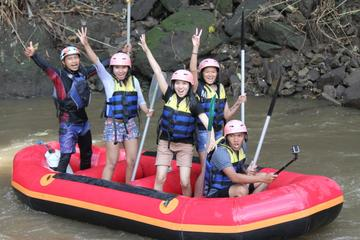 Bali Rafting Adventure with Lunch on the Ayung River