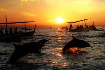 Dolphin Watching in Lovina and Gitgit Waterfall Tours