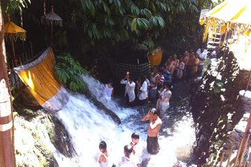 Private Bali Full Day Traditional Village and Hidden Canyon with Lunch
