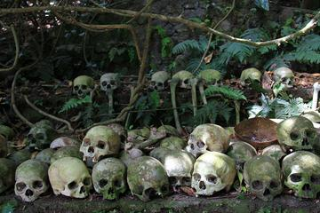 Private Journey to Trunyan - Bali Ancient Cemetery with the Taru Menyan Tree