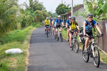 Private Mountain Cycling Adventure in Bali: Kintamani to Ubud