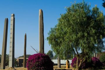 Best of Axum in One Day: History, Culture and Adventure