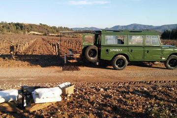 バルセロナからのミニバンによるワインジープのプライベートワイナリーとブドウ畑…