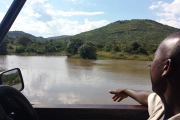 Pilanesberg Game Reserve Guided Day Tour from Johannesburg or Pretoria