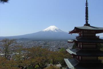 Full-Day Chartered Car Service to Mt Fuji and Hakone Lake Ashi