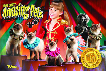 Amazing Pets Show in Branson