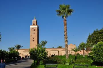 Marrakech City Highlights Guided Half-Day Tour