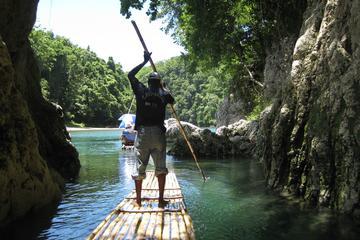 Tour por la naturaleza y el ecológico...