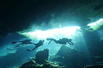 Two-Tank Dive at a Cenote from Playa del Carmen