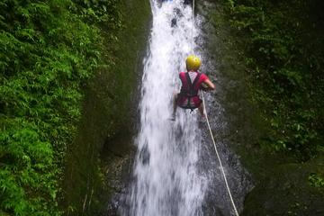 Canyoning, Hanging Trees and Ziplining Tour from La Fortuna