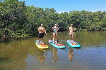Stand Up Paddle Board Tour of Don Pedro Island with Optional...