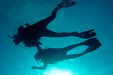 Diving and Reefs in Veracruz