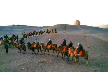 Private camel riding in the Gobi desert