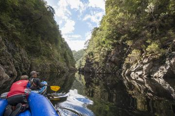 Half-Day King River Gorge Kayaking Tour
