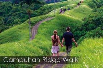 Full-day Campuhan ridge walk