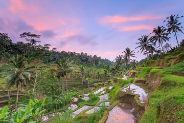 Private Full Day Tour to Bali´s Main Attractions
