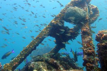 Grenada 2-Tank Scuba Dive for
