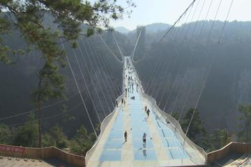 Zhangjiajie Grand Canyon with Glass Bridge Private Day Tour