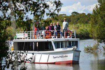 Historical Tweed River Sightseeing Cruise from Gold Coast, Byron Bay...