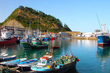 Full-day Guipuzcoa Coast Tour from...