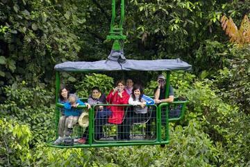 Aventura pela floresta tropical com...