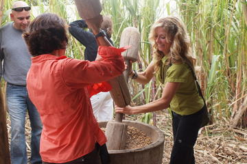 Coffee, Chocolate and Sugar Cane Tour in Monteverde