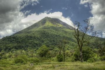 Excursión de un día al Volcán Arenal y a las aguas termales desde San...