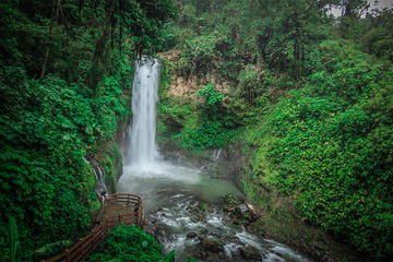 La Paz Waterfall Garden Walking Tour...