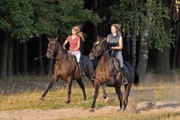 Paseo a caballo la cascada La Fortuna