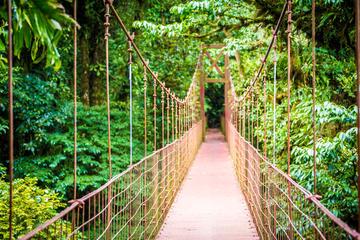Recorrido a pie por puentes colgantes en Arenal