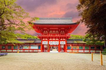 Full day Kyoto and Nara Photography Tour by Luxury van