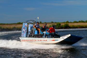 St Martins Keys Gran Dolphinismo Airboat Adventure and Dolphin Tour