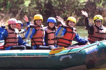 Book Half-Day Salt River Raft Trip on Viator