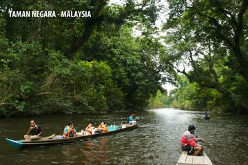 DAY TRIP TO TAMAN NEGARA (NATIONAL PARK OF MALAYSIA)