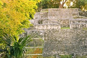 Belize New River Cruise and Lamanai Mayan Ruins Day Trip by Air from...