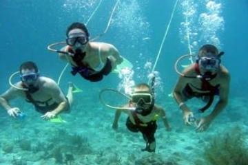 Excursión de Snuba Adventure en Belice desde Cayo Ambergris