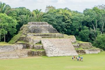 Excursion d'une demi-journée à Altun Ha et la ville de Belize