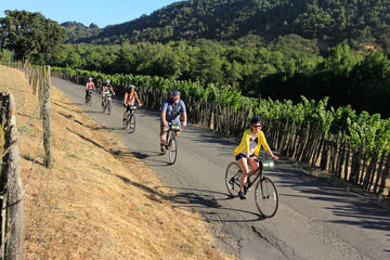 Day Trip Half-Day Napa Valley Bike and Wine Tour near Yountville, California