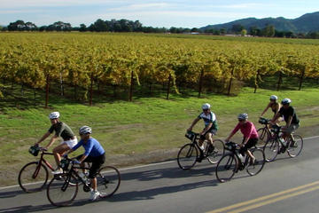 Day Trip Napa Valley Bike and Wine Tour near Yountville, California