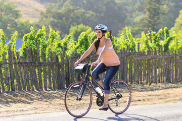Half-Day Sonoma Valley Bike and Wine Tour