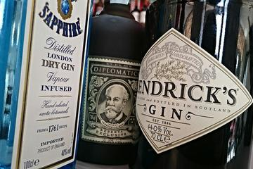 Private 3-Hour Gin Tasting in Idstein