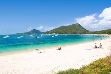 Port Stephens Beach Day Tour from...